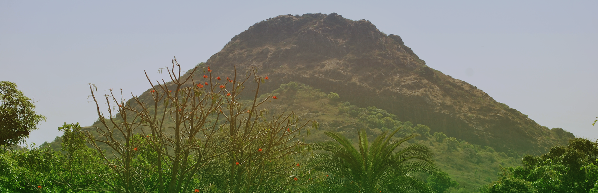 Mt-abu-trek